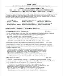 Ceo Resume Examples Simple Ceo Resume Examples Australia Sample Doc Templates Good Unusual