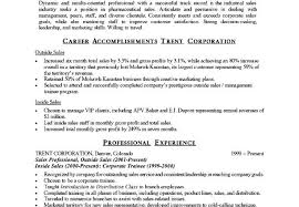 summary for resume examples professional summary examples for resume career overview example