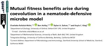 dissertation on neonatal jaundice