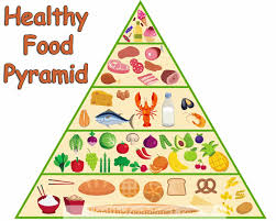 Image result for food pyramid chart 2019