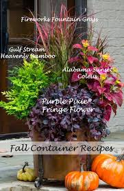 Best 25 Fall Potted Plants Ideas On Pinterest  Fall Container Container Garden Ideas For Fall