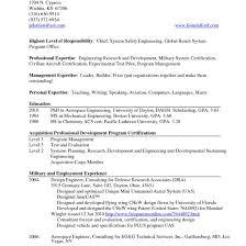 resume on website resume flatrica  resume website template