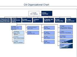 Citibank Organizational Structure 2019 2020 Studychacha
