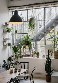 Decorating: Natural Indoor Plant For Living Room - DIY Plants