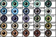 15 Best Eye Color Charts Images In 2019 Eye Color Eye
