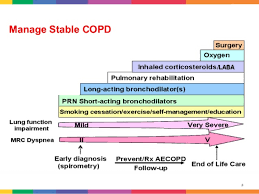 Copd Inhalers Chart Copd New Drugs New Devices
