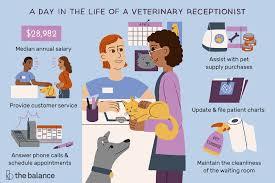 Veterinary Organizational Chart Veterinary Receptionist Job Description Salary More