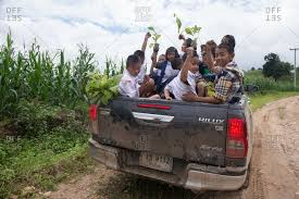 August 27, 2018: Asian Youth at the Back of Pickup Truck Rising Up ...