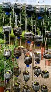 hydroponics garden. Vertical Hydroponics Garden Made From Recycled Water Bottles.