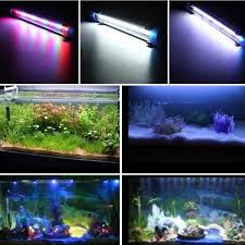 Dive Tank Light Us 7 43 7 Off Fish Tank Light Aquarium Decoration Led Lamp 20cm 30cm 40cm Bar Rgb Dive Underwater Light Waterproof Submersible Lamp Us Plug In Led