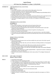 Top 8 Hedge Fund Accountant Resume Samples Resume Template Examples