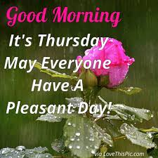 Thursday Morning Quotes Cool Good Morning It's Thursday May Everyone Have A Pleasant Day Days
