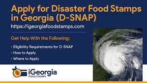 D Snap Income Chart Apply For Disaster Food Stamps In Georgia Georgia Food