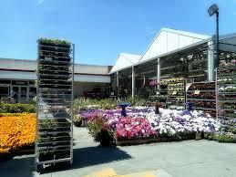 fred meyer garden center. Wonderful Fred Fred Meyer Store On Lake City Way Upper Level Garden Center Seattle WA And