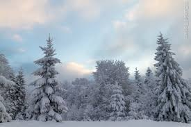 Znalezione obrazy dla zapytania zima w beskidach