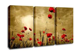 red poppy dkies flowers 3 panel canvas