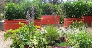 stock tank gardening raised beds contemporary landscape