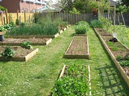 Small Picture Vegetable Garden Layout Ideas Beginners The Organic Gardening For