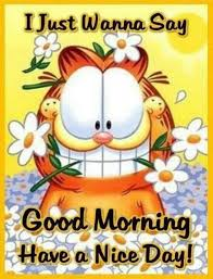 Good Morning Nyc Quotes Best of Good Morning Have A Nice Day Pictures Photos And Images For