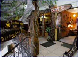 Costa Rica All Inclusive Deals  Relaxing Places To Stay  HOTEL Treehouse Monteverde Costa Rica