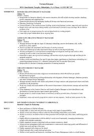 Marketing Project Manager Resume Sample Creative Project Manager Resume Samples Velvet Jobs 11