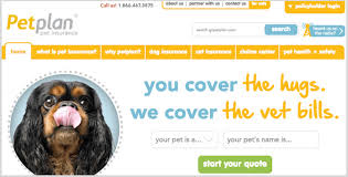 computer quote pet insurance reviews raipurnews
