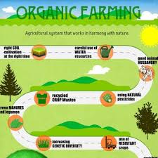 essay on the organic farming
