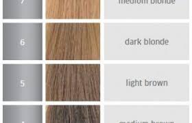 Ion Permanent Hair Color Chart 30 Ion Hair Color Developer