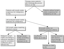 Lymph Flow Chart Flow Chart Depicting The Process Of Inclusion For All