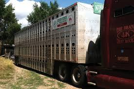 FMCSA Clarifies ELD Guidance for Horse Haulers | Transport Topics