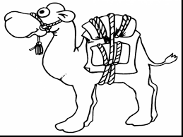 Small Picture superb printable camel coloring pages with camel coloring page