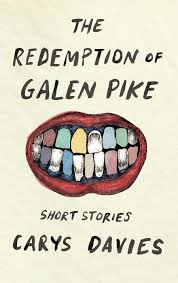 a little bit dark a little bit odd always absolutely beautiful the redemption of galen pike by carys davies