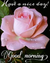 Good Morning Have A Nice Day Quotes Best of Have A Nice Day Good Morning Friends Pinterest Nice Gifs And