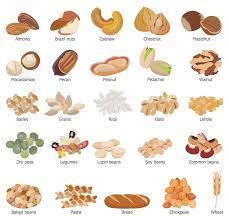 grains food group clipart. Contemporary Food Design Elements U2014 Grains Beans Legumes Nuts Grain Foods No Dairy Recipes Inside Grains Food Group Clipart