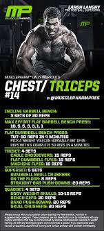 chest triceps