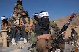 النظرة المثالية للشباب الباكستانيين إلى طالبان تقودهم إلى الموت  