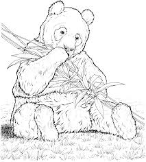 Free Coloring Book Panda Bear Coloring