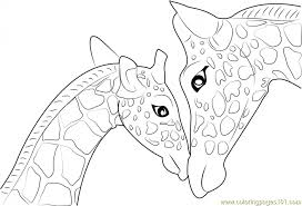 Small Picture Get This Advanced Elephant Coloring Pages 85395