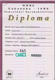 eng diploma 05 10 2013