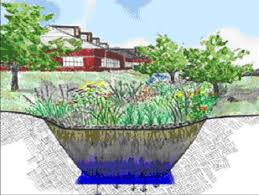 Small Picture Garden Design Garden Design with Sustainable practices for