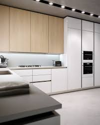 Modern Kitchen White Cabinets 103 Best Images About Kitchens On Pinterest Wood Cabinets