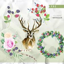 deer forest clip art antlers digital pack woodland