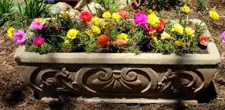 Small Picture Flower Containers for Beginners Todays Homeowner