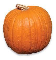 Image result for pumpkins