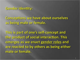 gender stratification updated  9 10