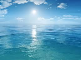 أكبر تجميع لأجمل صور من اعماق البحار (سبحان الله الخالق العظيم) Images?q=tbn:ANd9GcRH423syMxFnUepGHCTrLUK7clR3Wm2fgE1jVV97Sy_Er7wS5wa