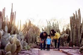 phoenix paint and play at the desert botanical garden