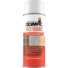 Olympic Waterguard 11 Oz Clear Multisurface Waterproofer Spray