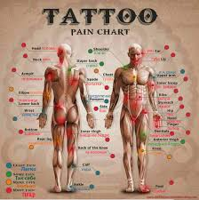 чарт болевых ощущений Tattoo Pain Chart Body Modification Ezine Blog