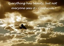 Everything Has Beauty Quotes Best Of Everything Has Its Beauty But Not Everyone Sees It Quotesvalley